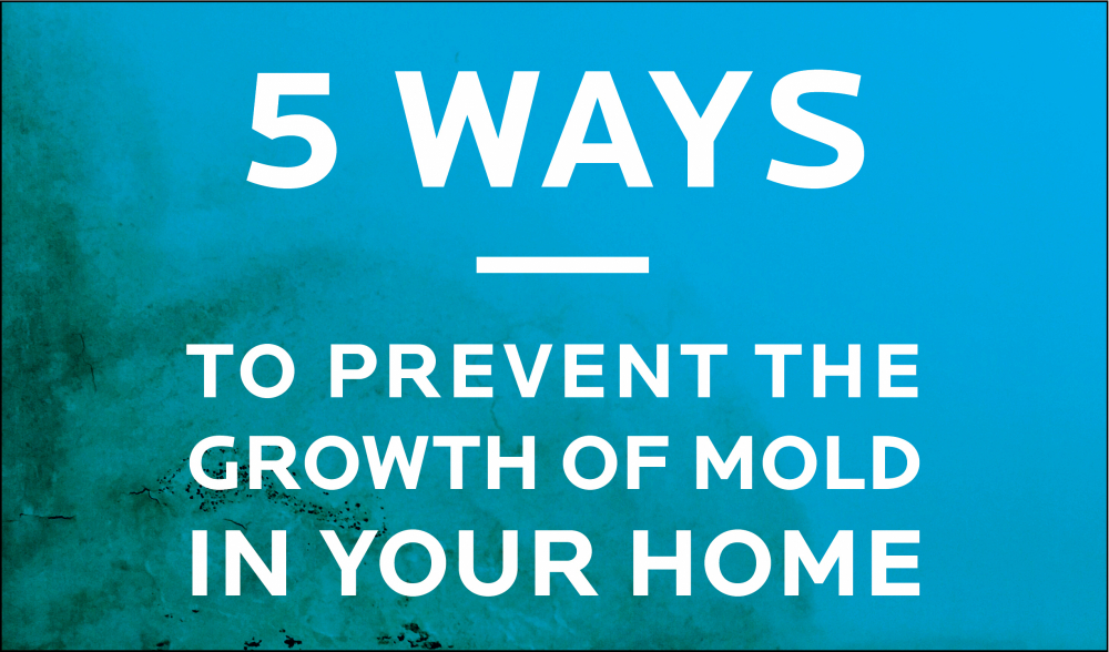How To Prevent Mold In Your Home 2